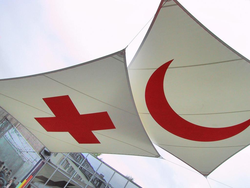 Image of the IFRC Flags
