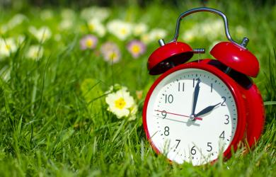 Alarm clock in the grass