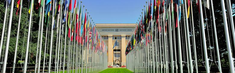 Flags and UN headquarters in Geneva