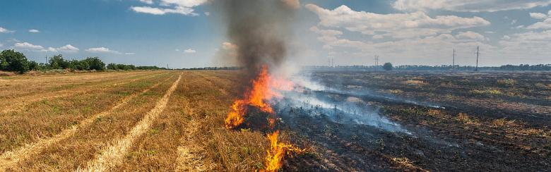 Burning straw in a field.
