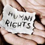 Oana Ichim human rights